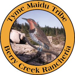 Berry Creek Rancheria of Tyme Maidu Indians 250x250