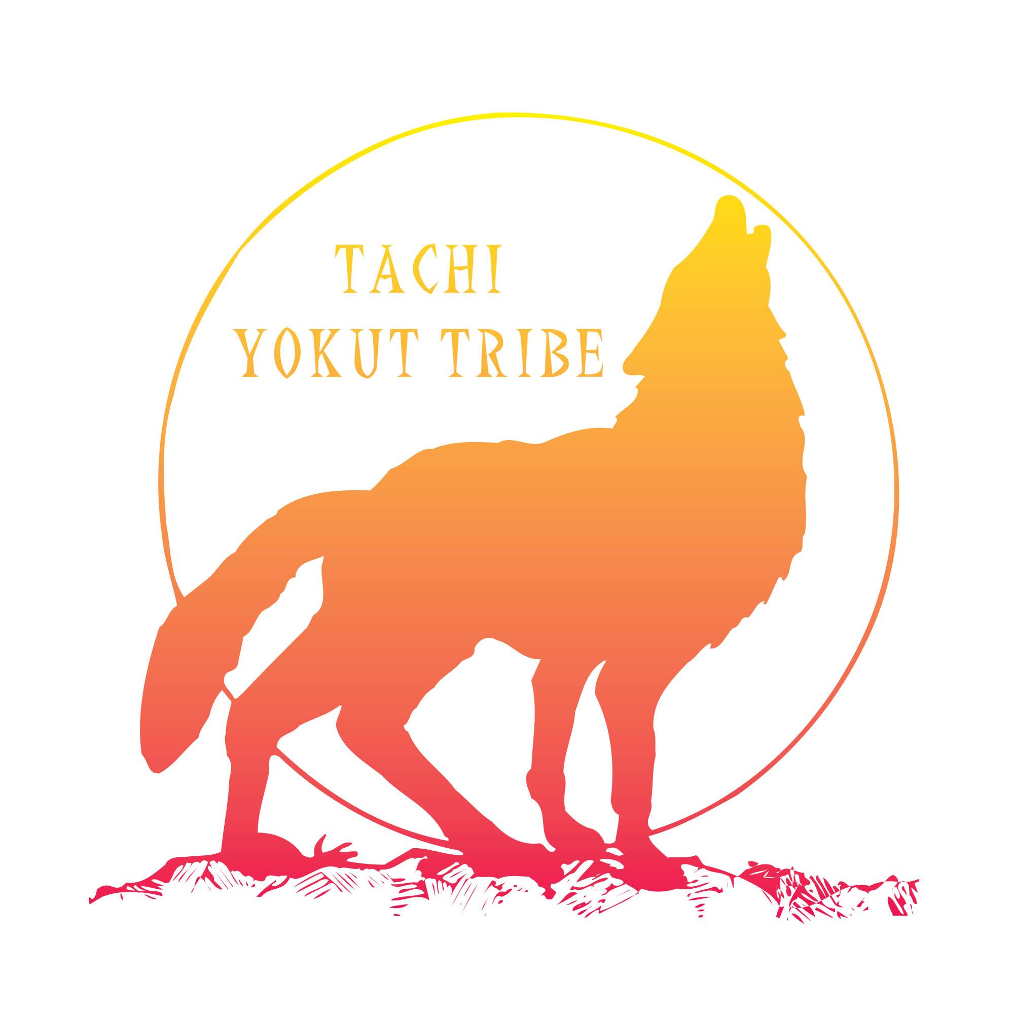 Tachi Yoktu logo